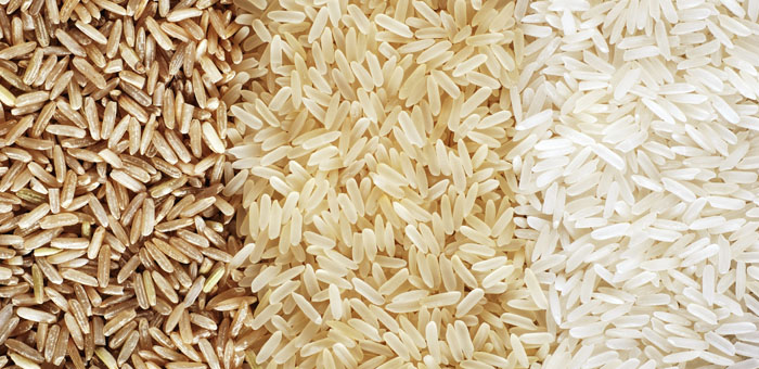 Rice Fun Facts Mobile Cuisine