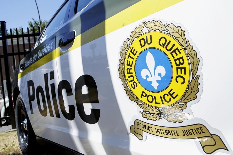 Production illégale de cannabis | Un réseau de détournement de permis de Santé Canada démantelé, 12 arrestations