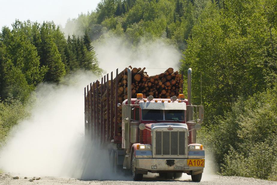 Des autochtones manifestent contre les forestières