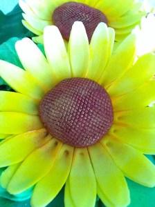 Torte-Sonnenblumen1