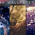 Download 4K Wallpapers App