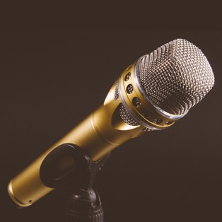 Gay ~ Microphone in Gold