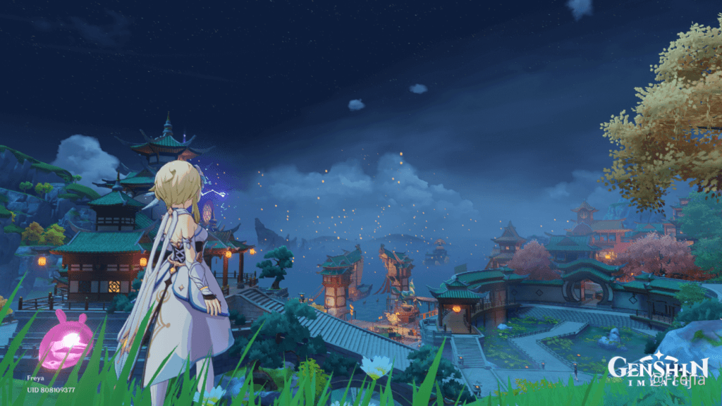 Electro Traveler of the Genshin Impact Update 1.6