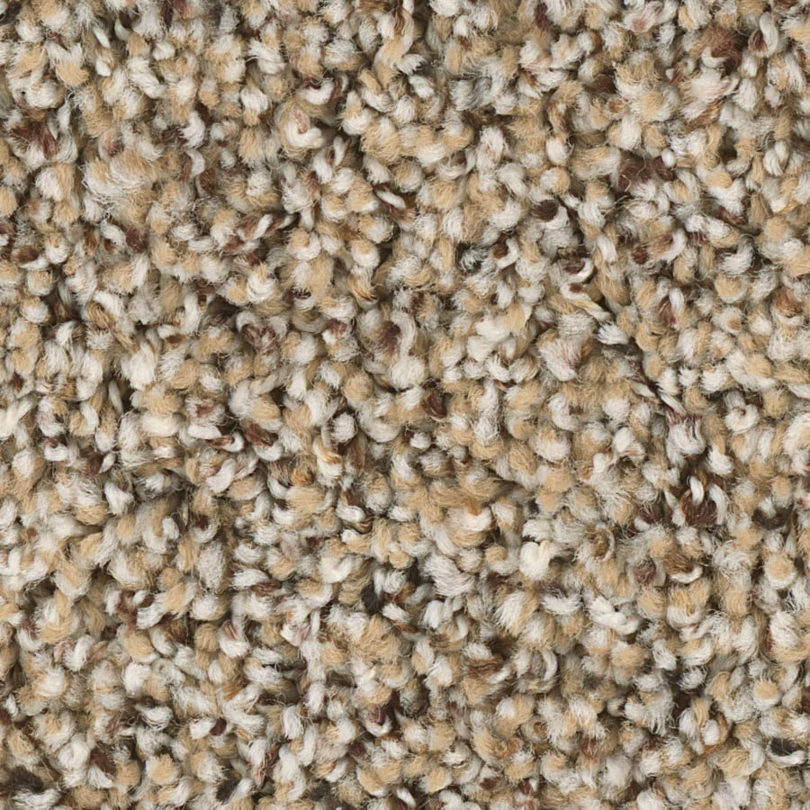 Shop Carpet at Lowes com Shaw Keynote 12 ft W x Cut to Length Essence Textured Interior Carpet