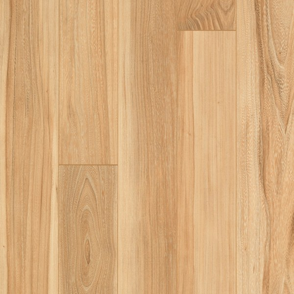 Shop Pergo MAX Boyer Elm 5 23 in W x 3 93 ft L Smooth Wood Plank     Pergo MAX Boyer Elm 5 23 in W x 3 93 ft L Smooth Wood Plank