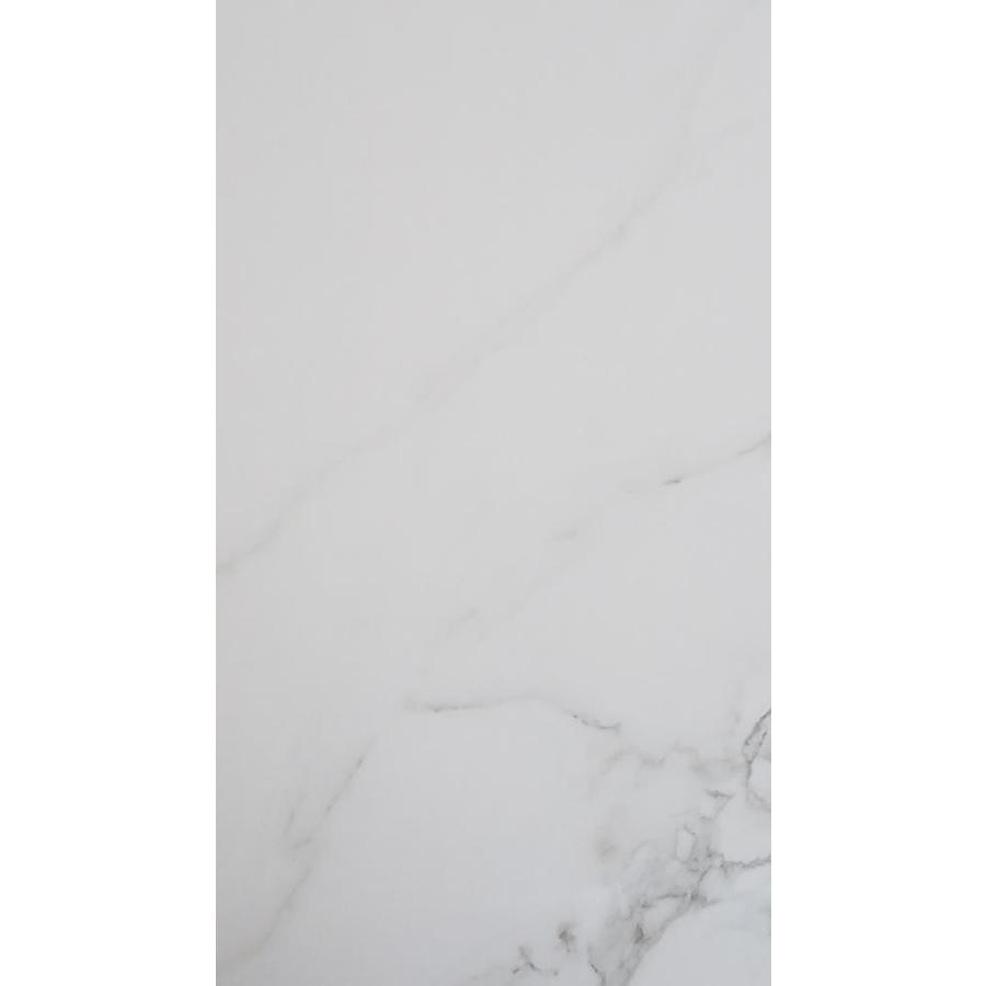floors 2000 calacatta 8 pack white 12 in x 24 in sealed porcelain stone look floor and wall tile