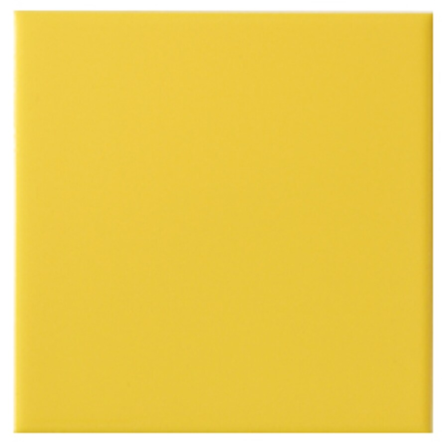 interceramic wall 80 pack true yellow ceramic wall tile common 4 in x 4 in actual 4 24 in x 4 24 in