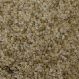 Shop STAINMASTER Carpet at Lowes com STAINMASTER PetProtect Kindred Spirit Textured Indoor Carpet