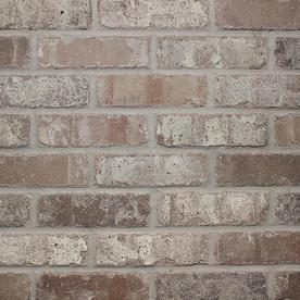 Old Mill Thin Brick Systems Colonial 2 25 In X 7 625 In