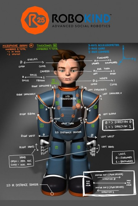 131030-robo-graphic  Video: Say Hello to the World's First Advanced Social Robot