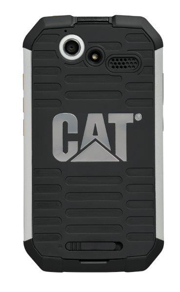 CatB15Q (11)