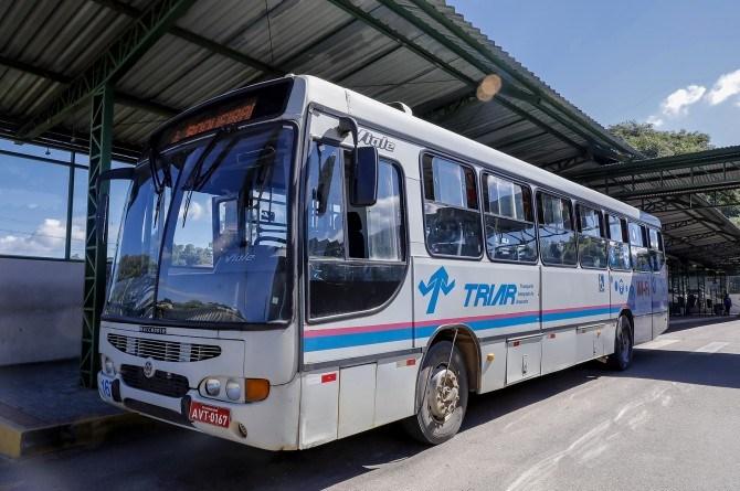 Ônibus de Araucária Gralha Azul