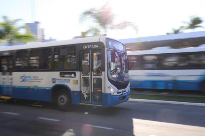 Ônibus Florianópolis Transporte