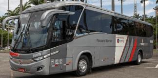 Novos Pássaro Marron Novos ônibus
