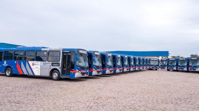 Novos ônibus Bus+
