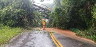 Rodovia Engenheiro Ariovaldo de Almeida Viana Queda de barreira SP-061