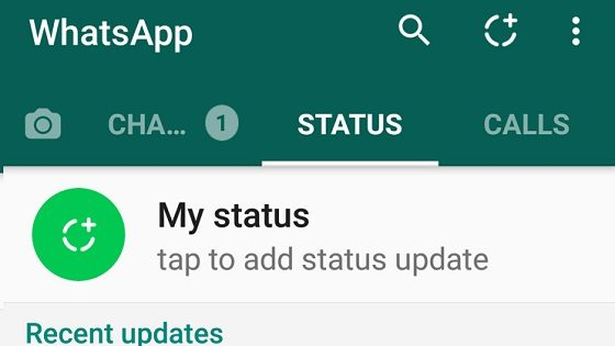 ads in whatsapp status