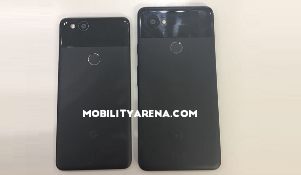 Google Pixel 2 Pixel 2 XL Photos back