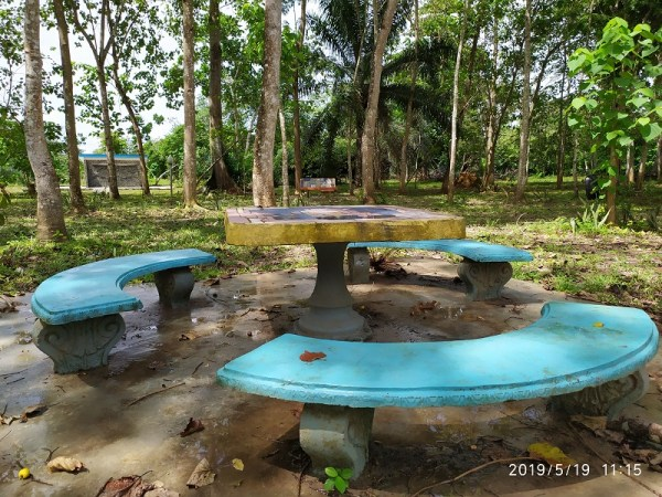 Holis Botanical Garden bench in the garden - Shot on Redmi Note 7