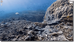 Google Maps adds underwater imagery, Apple be damned