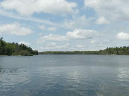 Stunning view of the water in Lake of the Woods, Ontario.