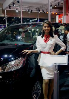 SPG stand mobil IIMS 2014-3