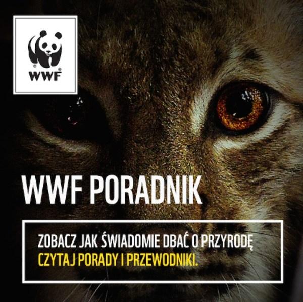 WWF Poradnik – edukacyjna aplikacja ekologiczna
