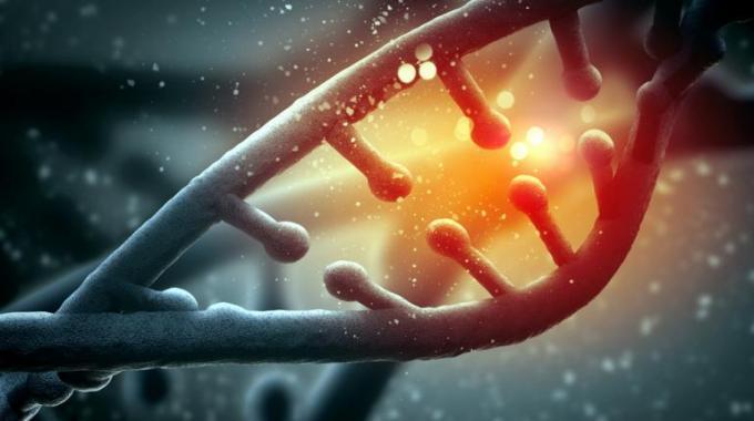 nano DNA