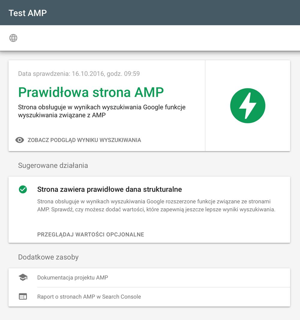 Prawidłowa strona AMP - wynik testu