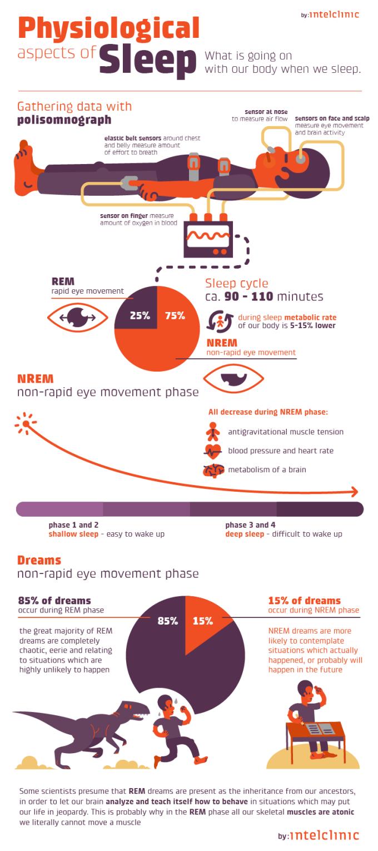 Co się dzieje z ciałem człowieka podczas snu? (infografika: Inteliclinic)
