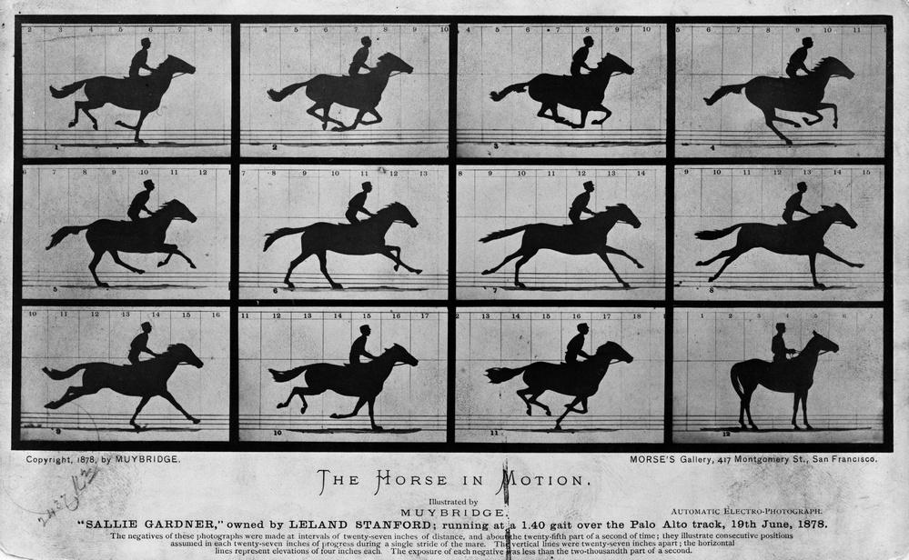 Horse in Motion - Eadweard Muybridge (1878)