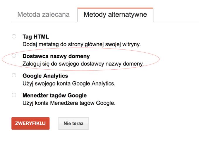 Weryfikacja przez dostawcę nazwy domeny w Google Search Console