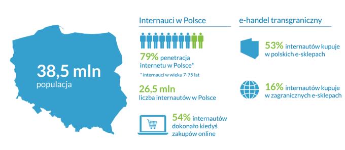 Charakterystyka internautów w Polsce