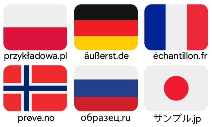 Domeny stron internetowych ze znakami diakrytycznymi a pozycjonowanie (Google)