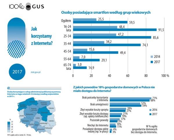 W jaki sposób Polacy korzystali z internetu w 2017 roku?