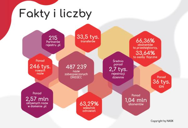"""NASK opublikował raport """"Rynek nazw domeny .pl"""" za 1 kw. 2018 r."""