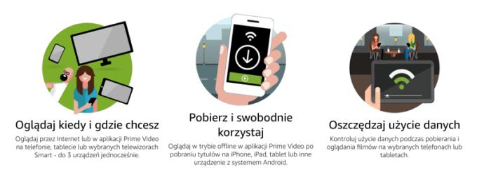 Przykładowy opis usługi w języku polskim ze strony internetowej