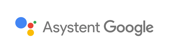 Logo Asystent Google (PL)