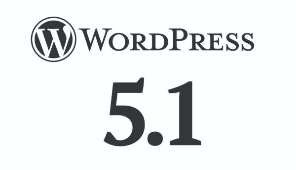 WordPress 5.1 zostanie wydany 21 lutego 2019 r.