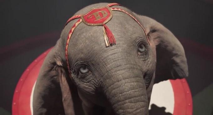 """Kadr z filmu """"Dumbo"""" Disneya (2019)"""