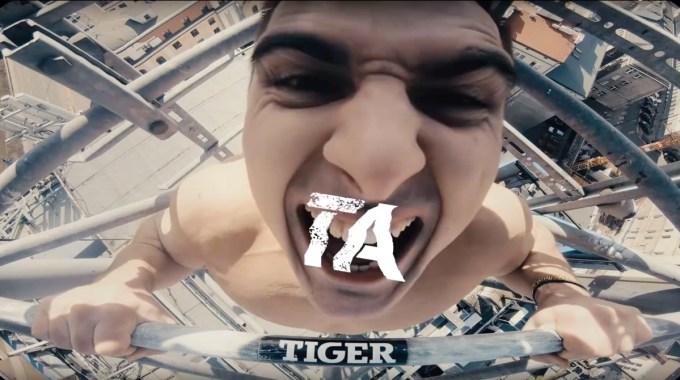 Kadr z teledysku/spotu Tigera