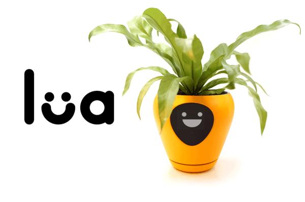 Doniczka Lua poinformuje Cię o nastroju Twoich roślin