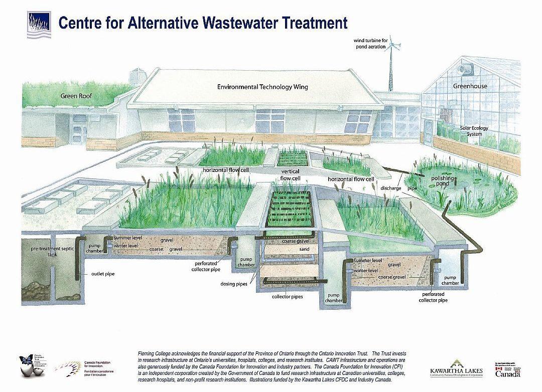 Alternatywna oczyszczalnia typu  Constructed Wetlands (Flemming Collage, Kanada)