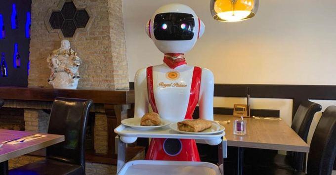 Robot obsługujący klientów w restauracji Royal Palace w Renesse w Holandii