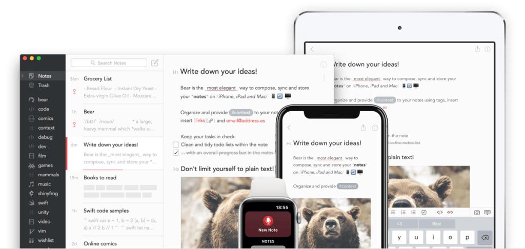 Bear - aplikacja mobilna