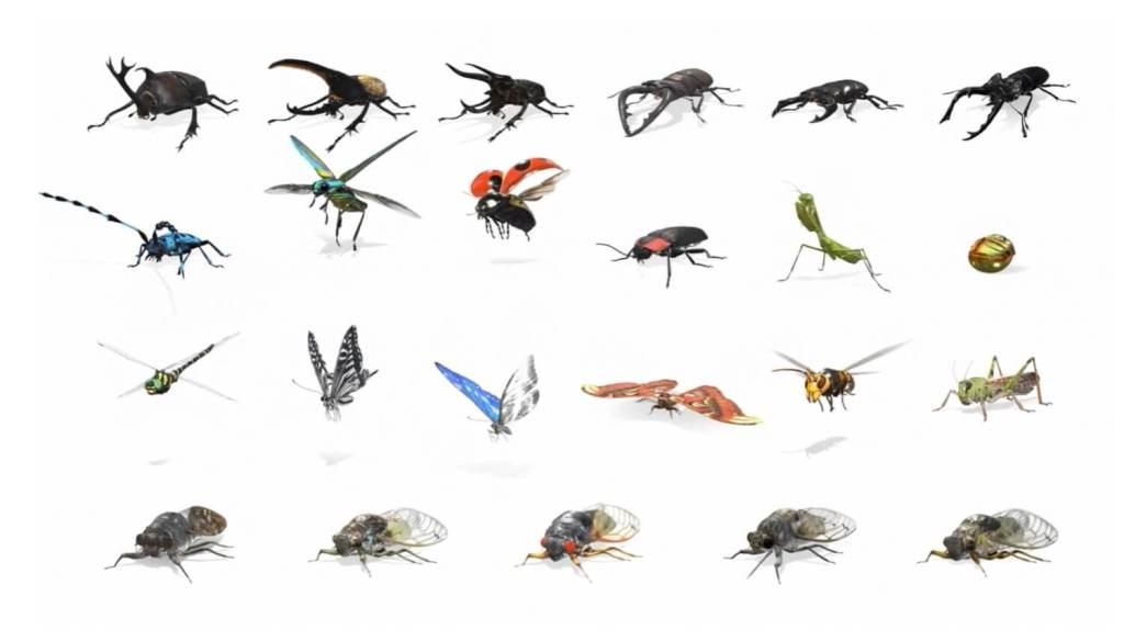 Owady w 3D/AR w Google'u - wszystkie gatunki