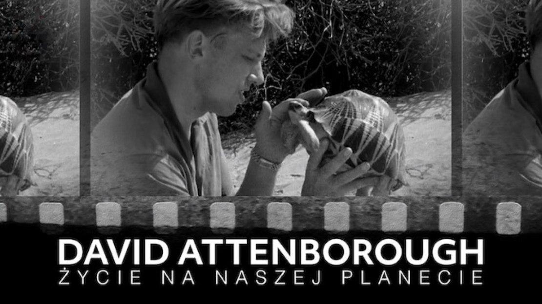David Attenborough: życie na naszej planecie (Netflix, 2020)