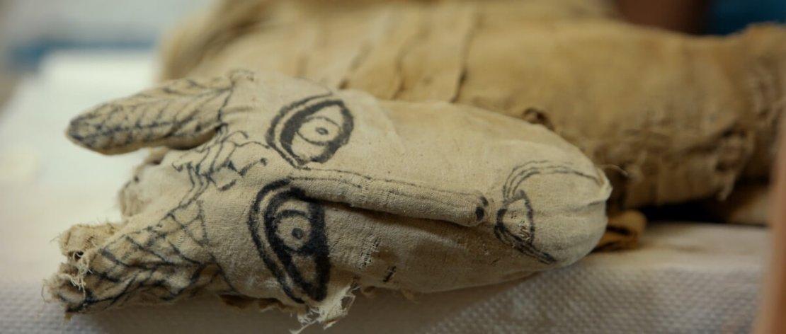 Mumia lwiątka odkryta w Sakkarze