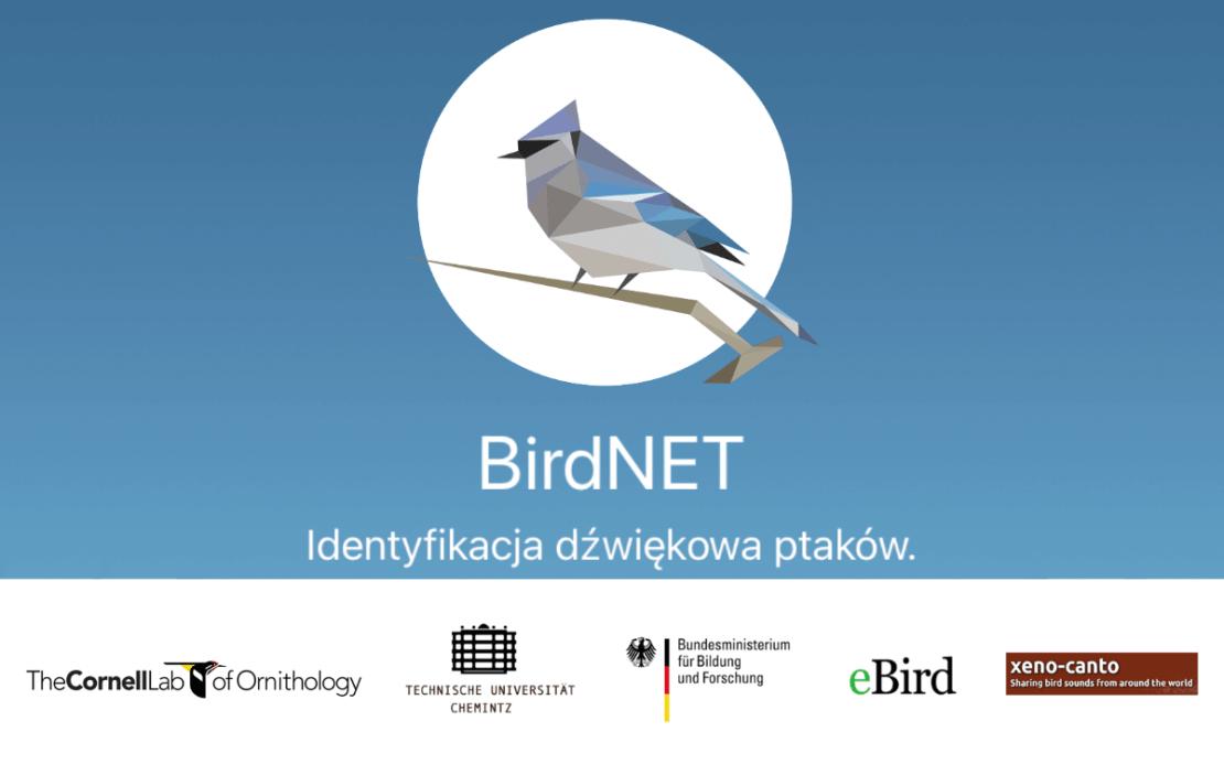BirdNET - Identyfikacja dźwiękowa ptaków (aplikacja mobilna)