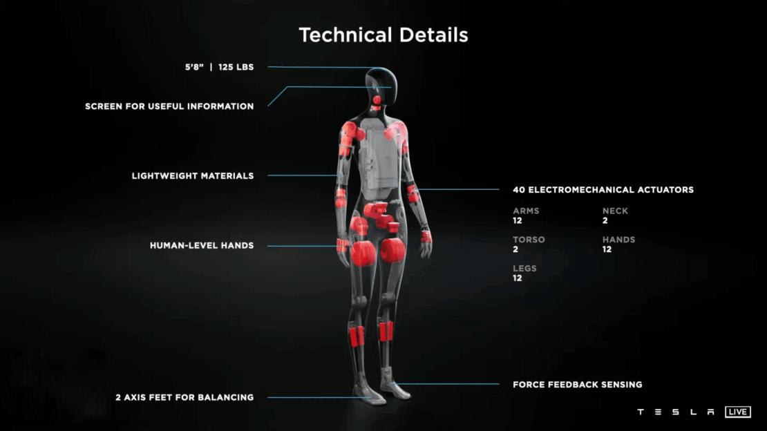 Tesla Bot – dane techniczne
